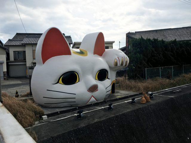 見守り猫「とこにゃん」